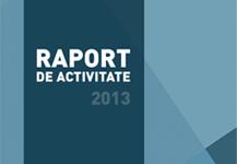 Raport de activitate 2013